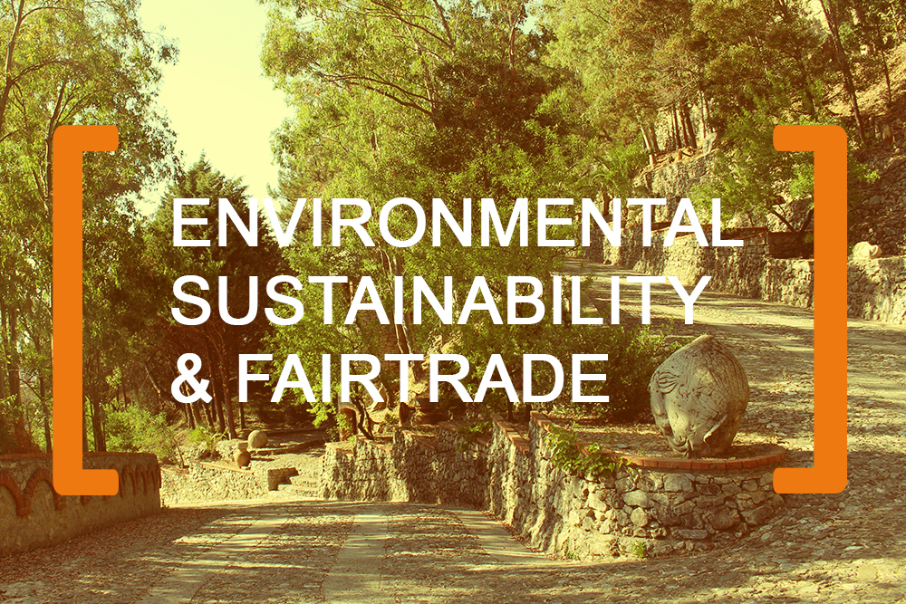 Environmental-Sustainability-Fairtrade for brainup lab